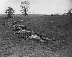 Confederate dead gathered for burial after the battle.[77] Photograph by Alexander Gardner.
