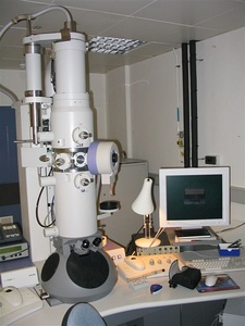 Modern transmission electron microscope.