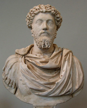 "Marcus Aurelius wrote that sex ""is the friction of a piece of gut and, following a sort of convulsion, the expulsion of some mucus"""