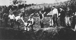 Ustaše execute prisoners near the Jasenovac concentration camp.