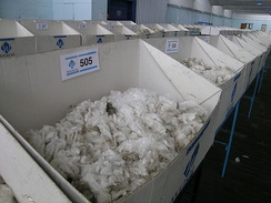 Merino wool samples for sale by auction, Newcastle, New South Wales