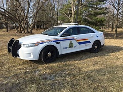 A Ford Taurus cruiser in an Ottawa field.