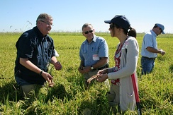 US Food and Drug Administration officials at a rice farm in California