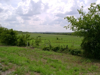 A landscape in eastern Jack County, Texas, typical of the Western Cross Timbers