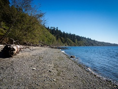 Beach at South Whidbey State Park