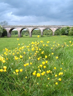 Tadcaster Viaduct, southwest approaches. Completed before the Y&NMR abandoned construction of its line in 1849. (2005)