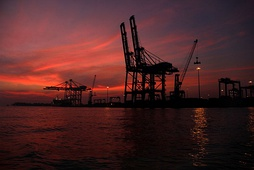 Cranes at the International Container Transshipment Terminal, Kochi.