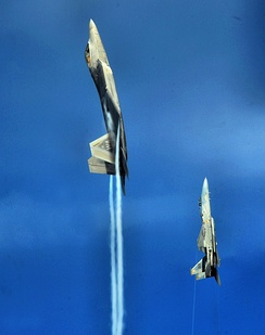 An F-22A Raptor and F-15C Eagle from the U.S. Air Force Weapons School's 433rd Weapons Squadron pull into a vertical climb over the Nevada Test and Training Range July 16, 2010.
