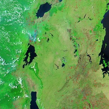 Image of the region between Lake Victoria (on the right) and Lakes Edward, Kivu and Tanganyika (from north to south) showing dense vegetation (bright green) and fires (red).