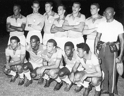 The Brazil national team at the 1959 Copa América