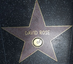 Star on the Hollywood Walk of Fame at 6514 Hollywood Blvd