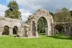 Ruins of the Franciscan friary in Wicklow