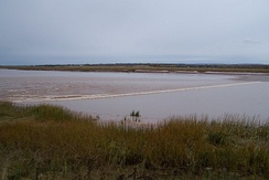 The Salmon River tidal bore October 22, 2009.