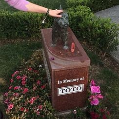Terry/Toto's memorial at the Hollywood Forever Cemetery