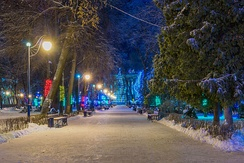 Snow at night in a Voronezh park
