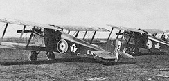 Sopwith Dolphins of No.1 (Fighter) Squadron, Canadian Air Force.