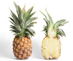 The fruit of a pineapple includes tissue from the sepals as well as the pistils of many flowers. It is an accessory fruit and a multiple fruit.