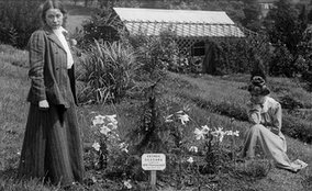 Adela Pankhurst (standing) and Kenney, pictured in 1909 beside a tree planted by Emmeline Pankhurst