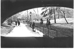 Central Park - New York in May 1940