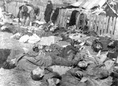 Polish victims of a massacre committed by UPA in the village of Lipniki, 1943