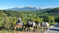 Mount Olympus is the highest mountain in Greece and mythical abode of the Gods of Olympus