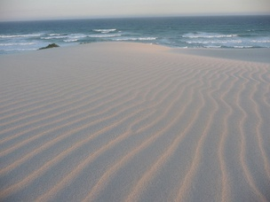 Ripple patterns in a sand dune created by wind or water is an example of an emergent structure in nature.