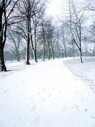 Snow in Spinney Hill Park, 2007