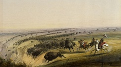 American bison being chased off a cliff as seen and painted by Alfred Jacob Miller, c. 1860