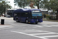 Lynx bus on the Route 102 line in Orlando