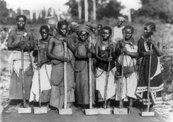 Female convicts chained together by their necks for work on a road. Dar es Salaam, Tanganyika c.1890–1927.