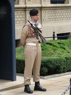 Guard in front of the Grand Ducal Palace in 2009