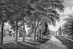 Main Street, looking south, 1875