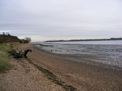 The pen name George Orwell was inspired by the River Orwell in the English county of Suffolk[54]