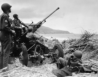 Swedish Bofors 40mm anti-aircraft gun mounted overlooking a beach in Algeria, manned by a United States anti-aircraft artillery crew. (1943)
