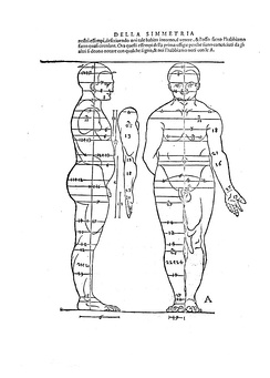 Illustration from the Four Books on Human Proportion