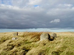 Five Stanes Stone Circle - geograph.org.uk - 51427.jpg