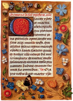 The lavish illusionistic borders of this Flemish book of hours from the late 1470s are typical of luxury books of this period, which were now often decorated on every page. The butterfly wing cutting into the text area is an example of playing with visual conventions, typical of the period.(Among the plants are the Veronica, Vinca, Viola tricolor, Bellis perennis, and Chelidonium majus. The butterfly is Aglais urticae. The Latin text is a devotion to Saint Christopher).