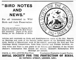 Advert for Bird Notes and News from the March 1934 edition of North Western Naturalist magazine. Note early logo.