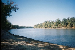 Apalachicola River in Torreya State Park