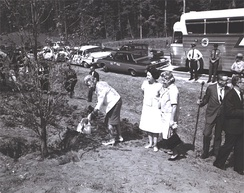 Lady Bird Johnson oversees the planting of a dogwood as a part of her beautification.