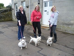 "Three generations of ""Westies"" in a village in Fife, Scotland"