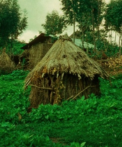 A niddah hut (Mergem Gogo) at the Jewish village of Ambober in northern Ethiopia, 1976.