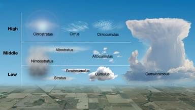 Genus classification by altitude of occurrence. Multi-level types not limited by altitude include the two main precipitating clouds, cumulonimbus and nimbostratus. The latter has been horizontally compressed in this depiction.