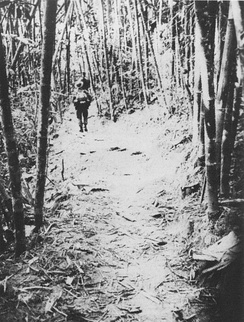 NVA troops on the Trail (photo taken by a U.S. SOG recon team)