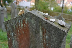 Small stones on a gravestone in a Jewish cemetery in Germany