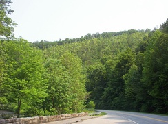 View at end of Cherohala Skyway near Tellico Plains