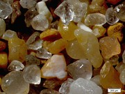 Quartz sand particles and shell fragments from a beach. The primary component of typical beach sand is quartz, or silica (SiO2).
