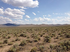 Sagebrush steppe in Elko County, Nevada along US 93.  This view is characteristic of most of the county.