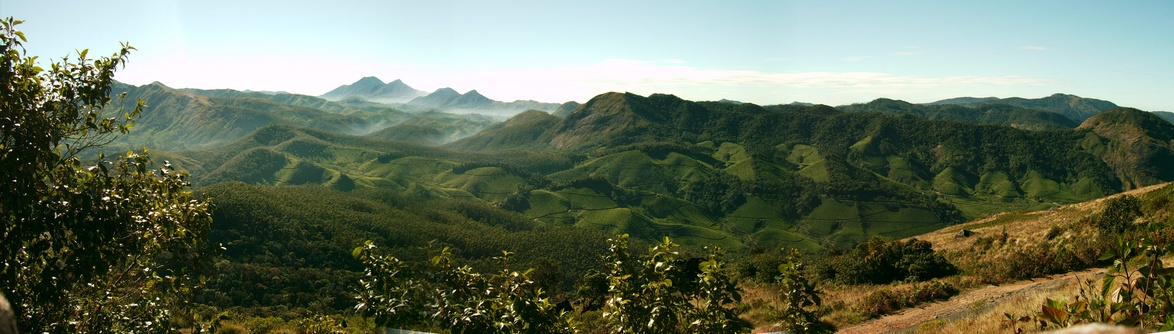 Hills around the tea plantations, Munnar