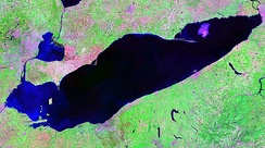 False-color satellite image of Lake Erie, 2007